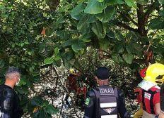 Avião de pequeno porte cai em mangue de Aracaju