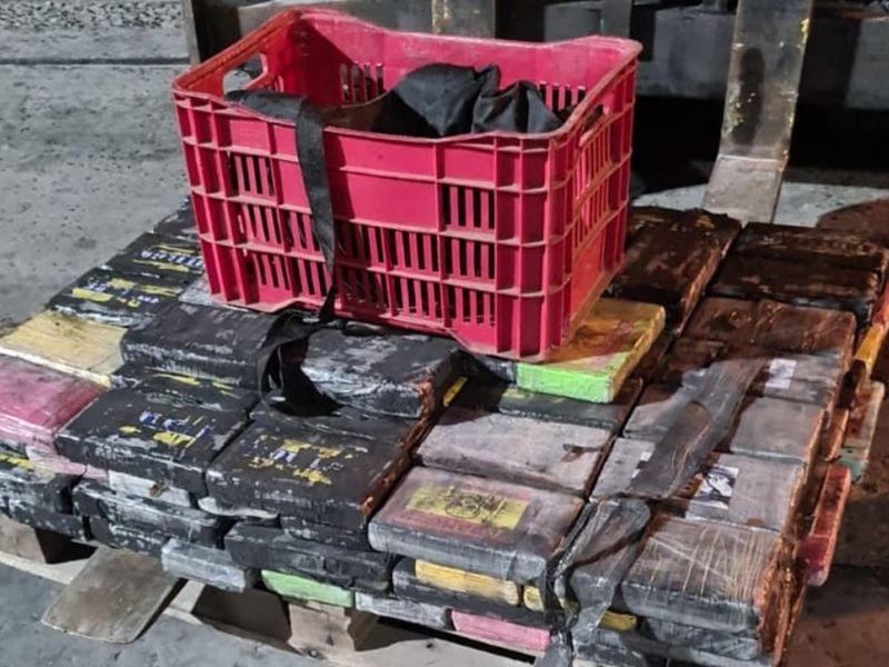 PF prende três funcionários do Porto de Salvador colocando cocaína dentro de contêiner