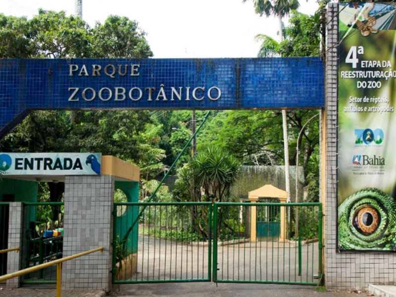 Zoológico de Salvador volta a funcionar nesta terça (19)